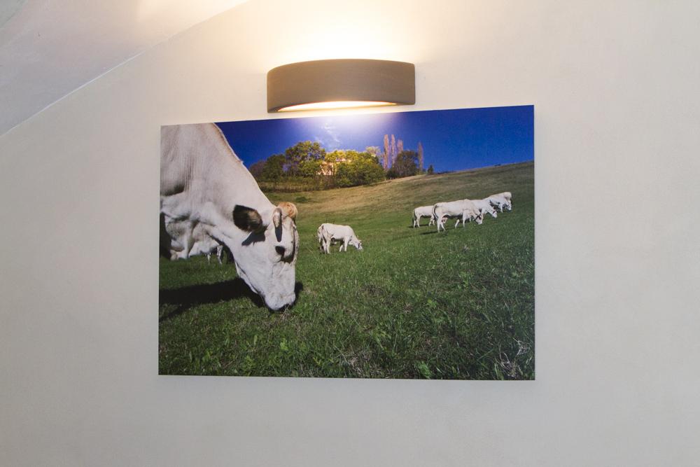 Agriturismo Cascina Bianca pannello 70x100 - Foto Marco Destefanis